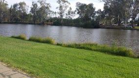 Трава и вода Стоковое фото RF