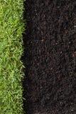 Трава и грязь стоковое изображение