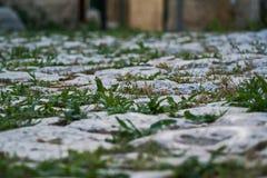 Трава и камень Мощенная булыжником улица в Otranto Стоковые Изображения RF