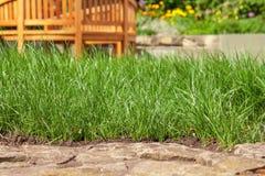 Трава и камни лужайки Стоковые Изображения RF
