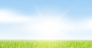 Трава и небо весны Стоковое фото RF
