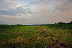 Трава и небо стоковые изображения rf