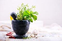 Трава и специя ароматности Стоковые Фотографии RF