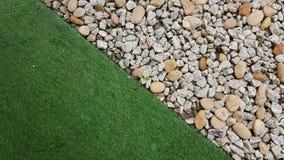 Трава и утес Стоковая Фотография