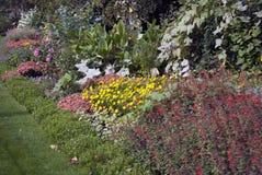 Трава и цветки стоковая фотография rf