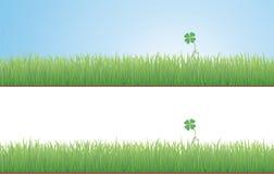 трава клевера иллюстрация вектора