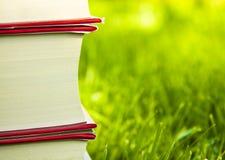 трава книги Стоковые Фото