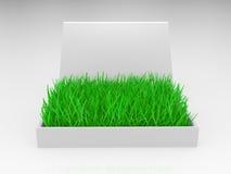 трава коробки Стоковое Изображение