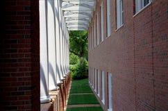 трава корридора Стоковая Фотография RF