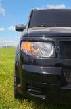 трава кроссовера Стоковое Фото