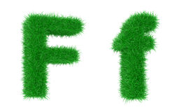 трава купели Стоковая Фотография