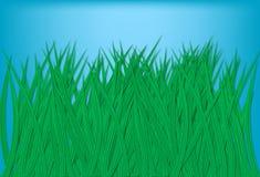 трава лезвий иллюстрация вектора