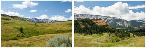 Трава луга горы заволакивает коллаж Стоковое Фото