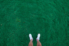 трава мальчика Стоковые Изображения