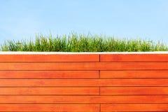 Трава на саде крыши Стоковое Фото