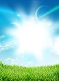 Трава неба крутая Стоковое Изображение