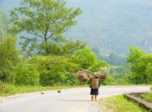 Трава нося женщины этнического меньшинства, который нужно самонавести Стоковая Фотография