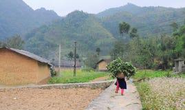 Трава нося женщины этнического меньшинства, который нужно самонавести Стоковые Фотографии RF