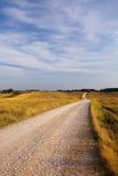 трава облаков Стоковое Изображение RF
