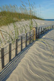 Трава овсов моря и похороненная загородка дюны на пляже Wrightsville (Уилмингтоне) Северной Каролине Стоковые Фото