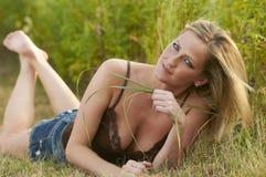трава ослабляя Стоковое фото RF