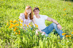 трава пар Стоковое Изображение