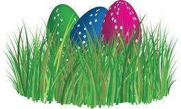 трава пасхальныхя Стоковые Фото