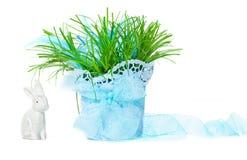 Трава пасхи, зайчик пасхи, украшение пасхи Стоковое фото RF