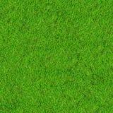 трава поля предпосылки Стоковые Фотографии RF