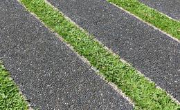 Трава пола Стоковые Фотографии RF