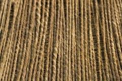 трава предпосылки выравнивает веревочку вертикальный w ndop Стоковые Изображения RF