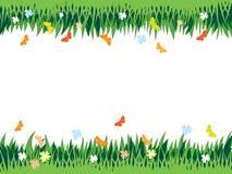 трава предпосылки Иллюстрация вектора