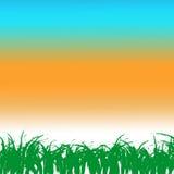 Трава рамки Стоковое фото RF