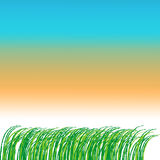 Трава рамки Стоковое Фото