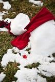 трава расплавила снеговик Стоковое Фото
