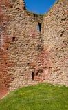 Трава растя поверх стены стоковые изображения rf