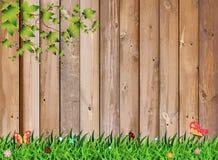 Трава свежей весны зеленая с заводом лист над деревянной загородкой Стоковое Изображение RF