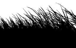 Трава силуэта Стоковые Изображения