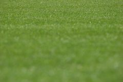 Трава стадиона стоковая фотография