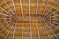 Трава хаты крыши palapa Cancun высушенная Стоковые Фото