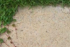 Трава цемента абстрактной стены предпосылки старая Стоковые Изображения