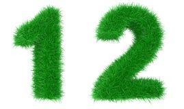 трава числа Стоковое фото RF