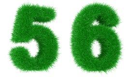 трава числа Стоковые Изображения