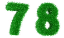 трава числа Стоковая Фотография RF