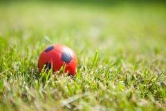 трава шарика предпосылки малая Стоковая Фотография