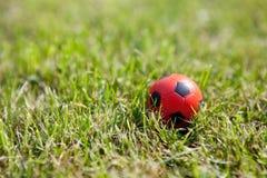 трава шарика предпосылки малая Стоковые Изображения