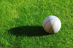 трава шарика Стоковые Изображения