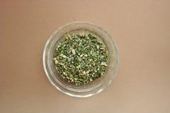 трава echinacea Стоковые Изображения
