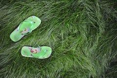 трава flipflops Стоковая Фотография