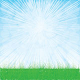 Трава whit ландшафта лета. Стоковое Изображение RF